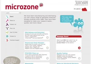 Microzone WordPress CMS website